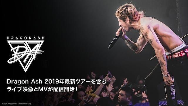"""ファンを熱狂させたDragon Ashの最新ライブ「DRAGONASH TOUR 2019 """"THE FIVES"""" / """"THE SEVENS""""」をU-NEXT独占配信"""
