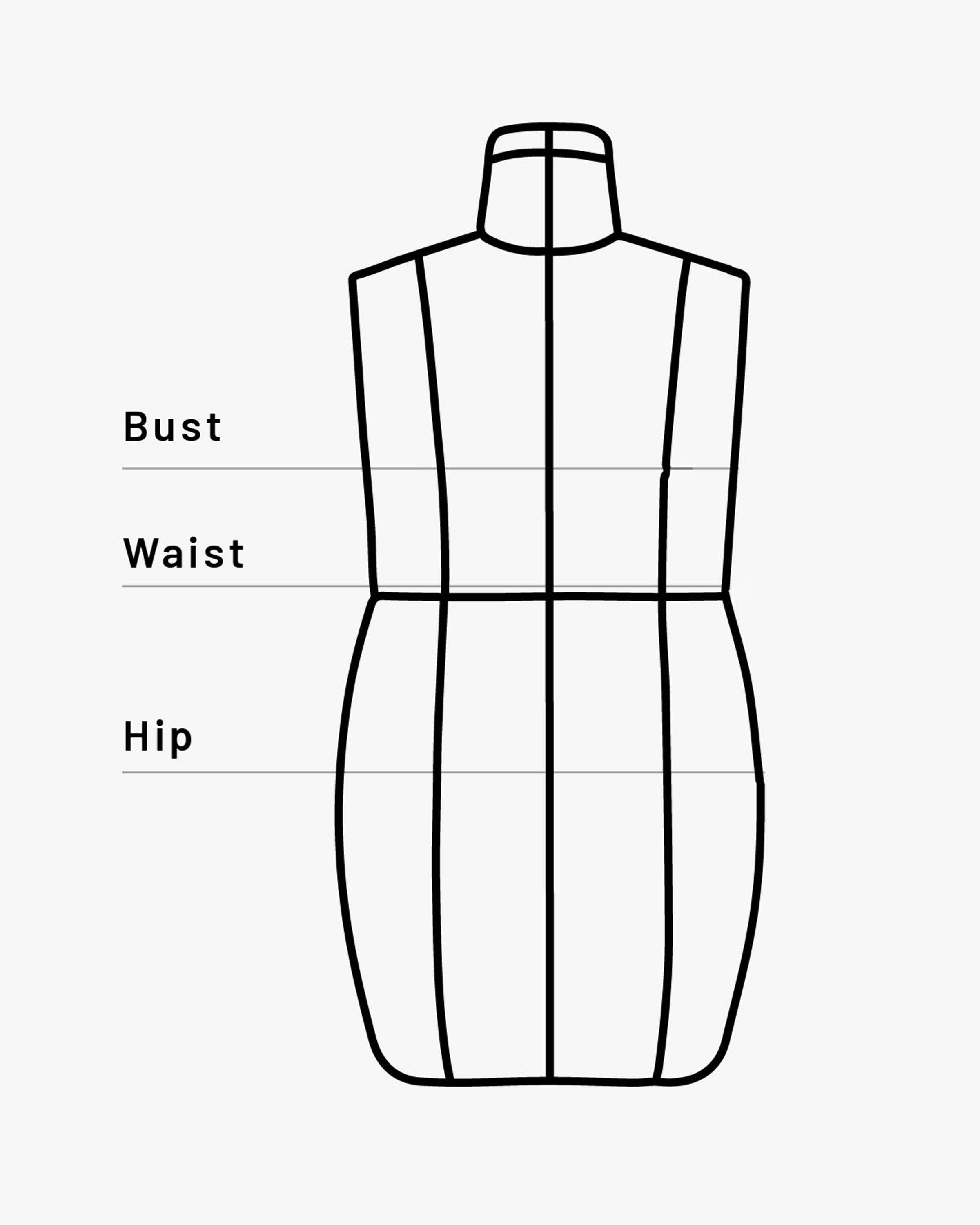 Illustration of a dress form with sizing areas highlighted