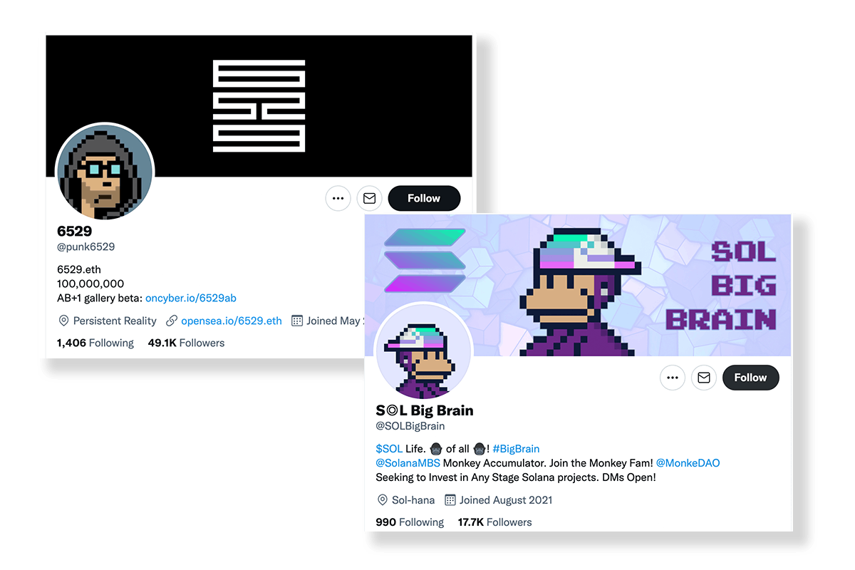 A CryptoPunk and Solana MBS Twitter PFP