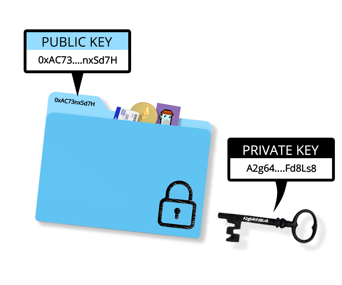 Crypto Wallet Public Key and Private Key