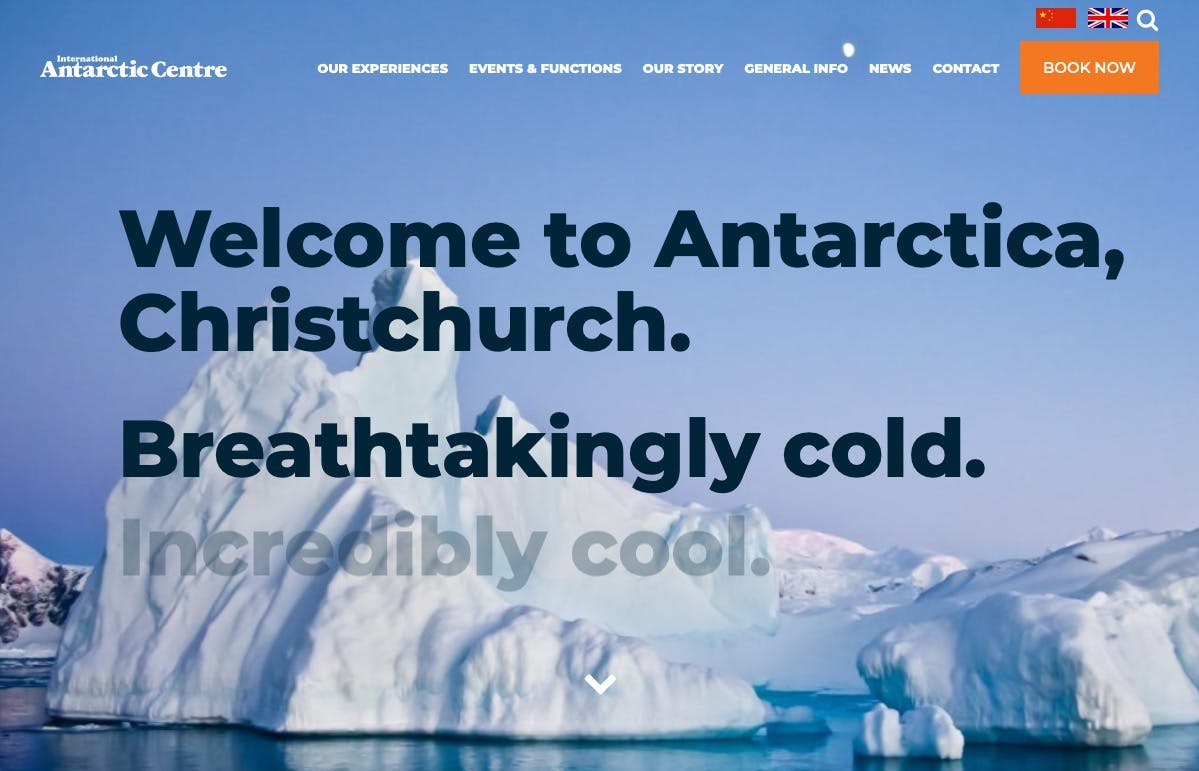 International Antarctic Center screenshot
