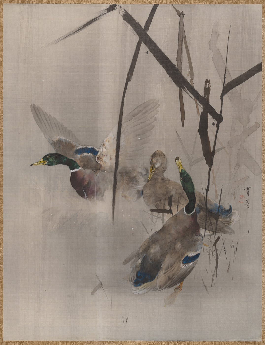 Ducks in the Rushes by Watanabi Seitei, at The Met, New York