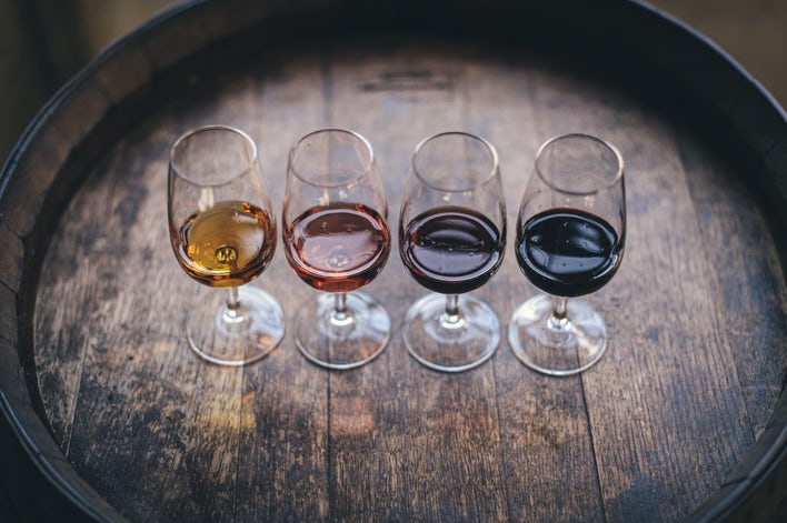 oenologie, vin angers, découverte angers