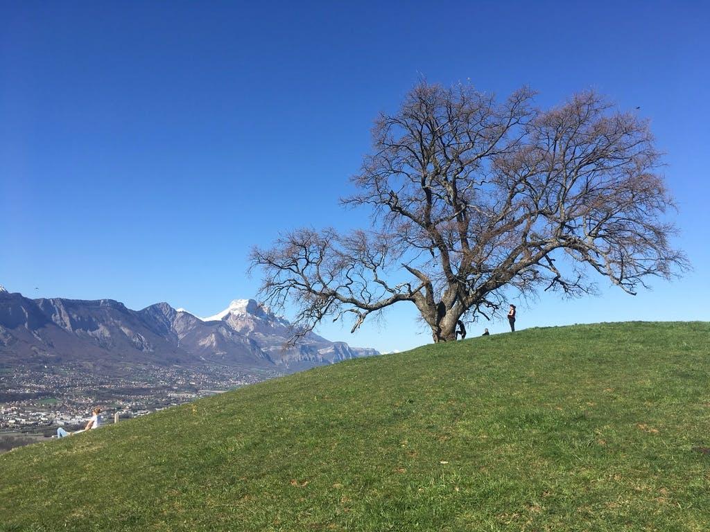 shooting photo Grenoble, photographe Grenoble, shooting photo famille Grenoble