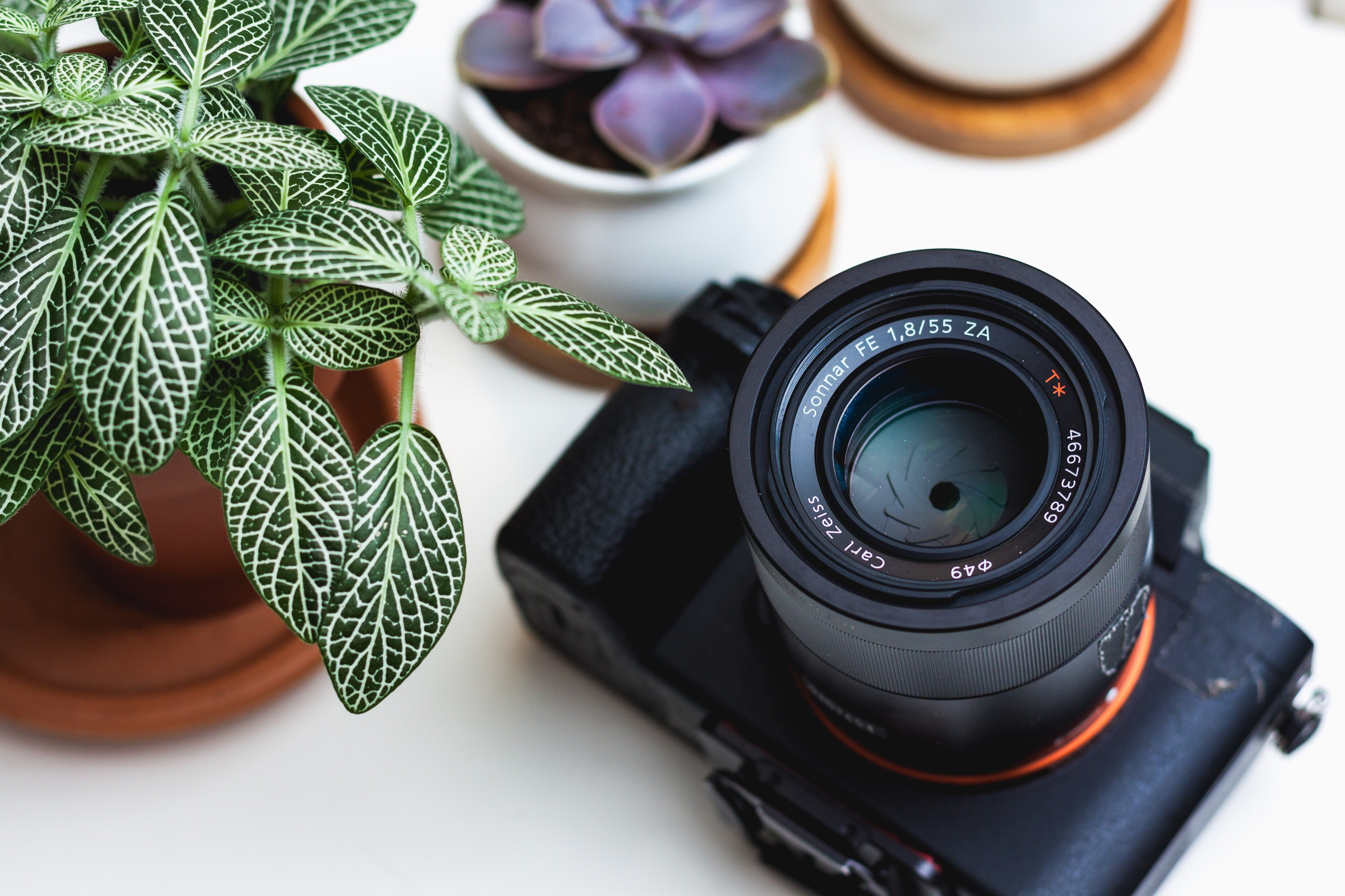 packshot photographie, e commerce photos