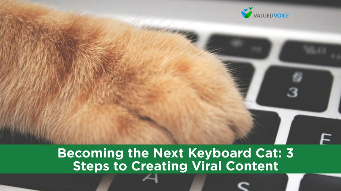 Becoming the Next Keyboard Cat: 3 Steps to Creating Viral Content