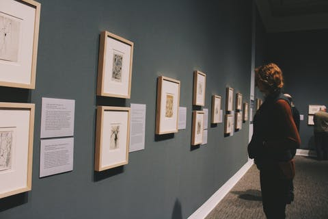 woman looking at drawings in a museum