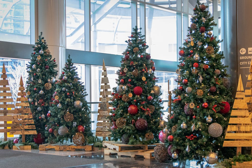 Sustainable Christmas trees at Vancouver Convention Centre