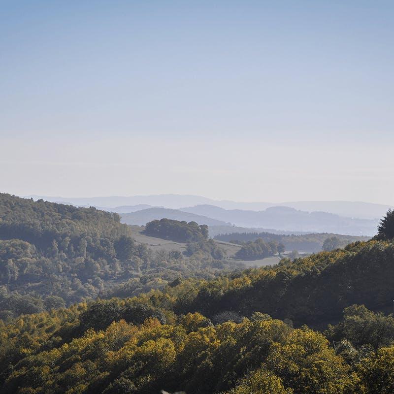 Un séjour nature en Bourgogne