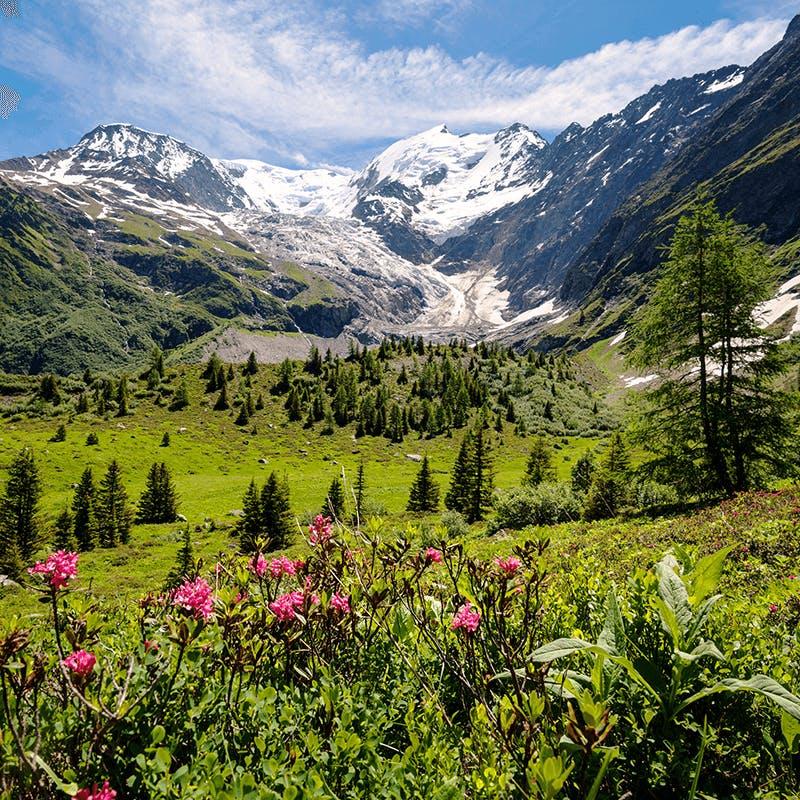 Une vue sur les Alpes Françaises