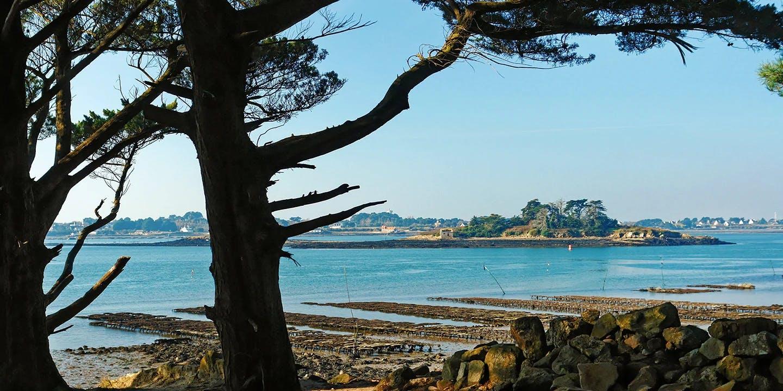 Visiter Sept Îles (Morbihan)