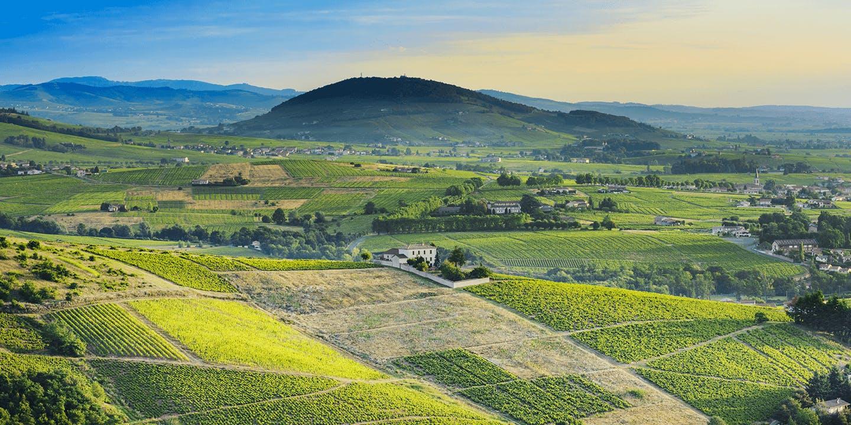 Les Monts du Beaujolais dans le Rhône