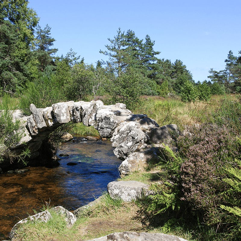 Un séjour nature dans le Limousin