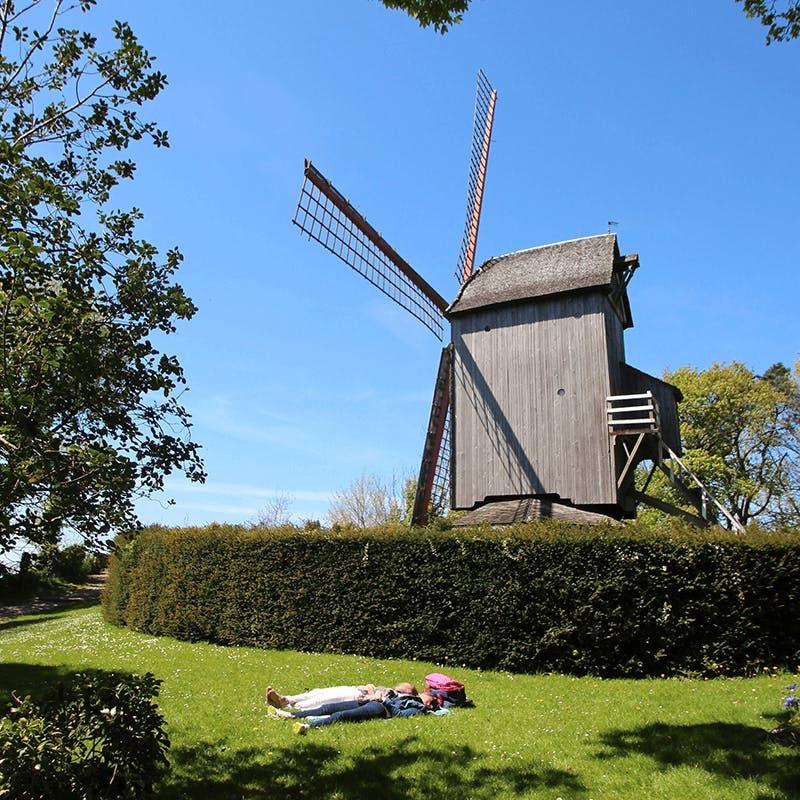 Un exemple de moulins à vent de la Flandre