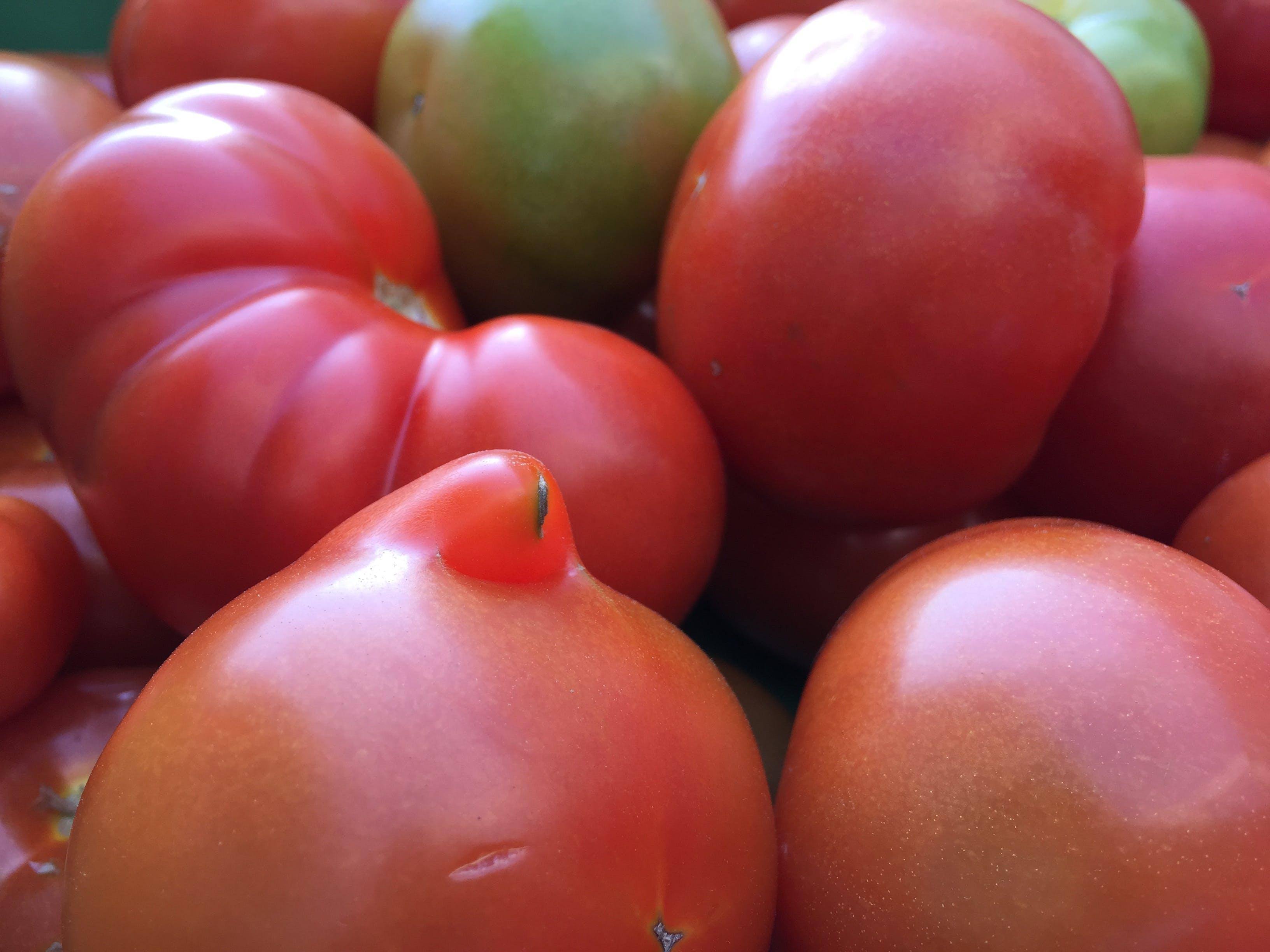 Grøntsager der er skæve, krumme eller sjove i størrelsen kan nu ende i supermarkedernes frugt og grønt-afdeling i stedet for landmandens affaldscontainer. Foto: Alfred Pedersen & Søn.