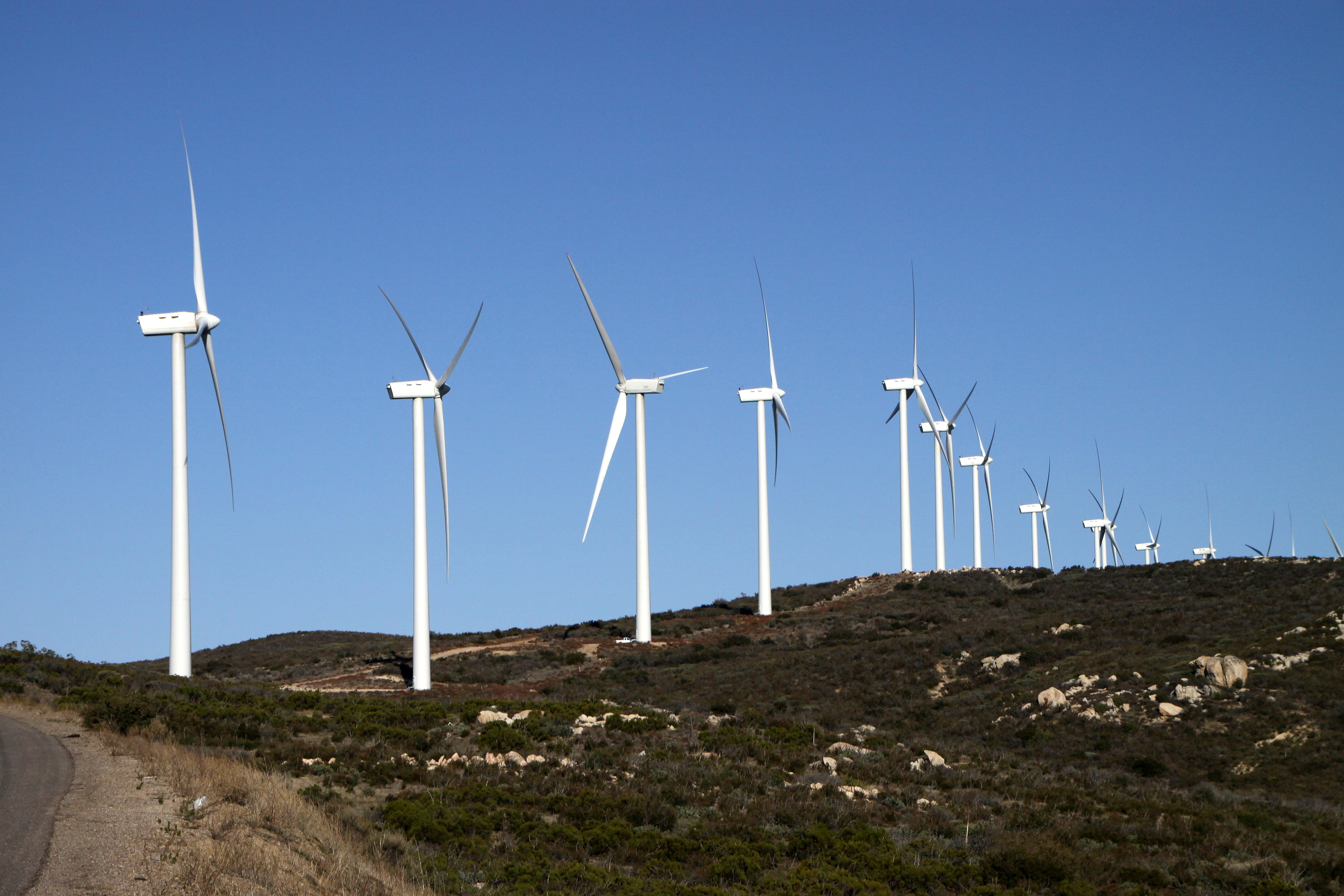 Dansk grøn energiteknologi hitter i udlandet. Det er særligt produkter og løsninger til vindmøller, der er efterspørgelse på. Foto: Bill Morrow CCBY