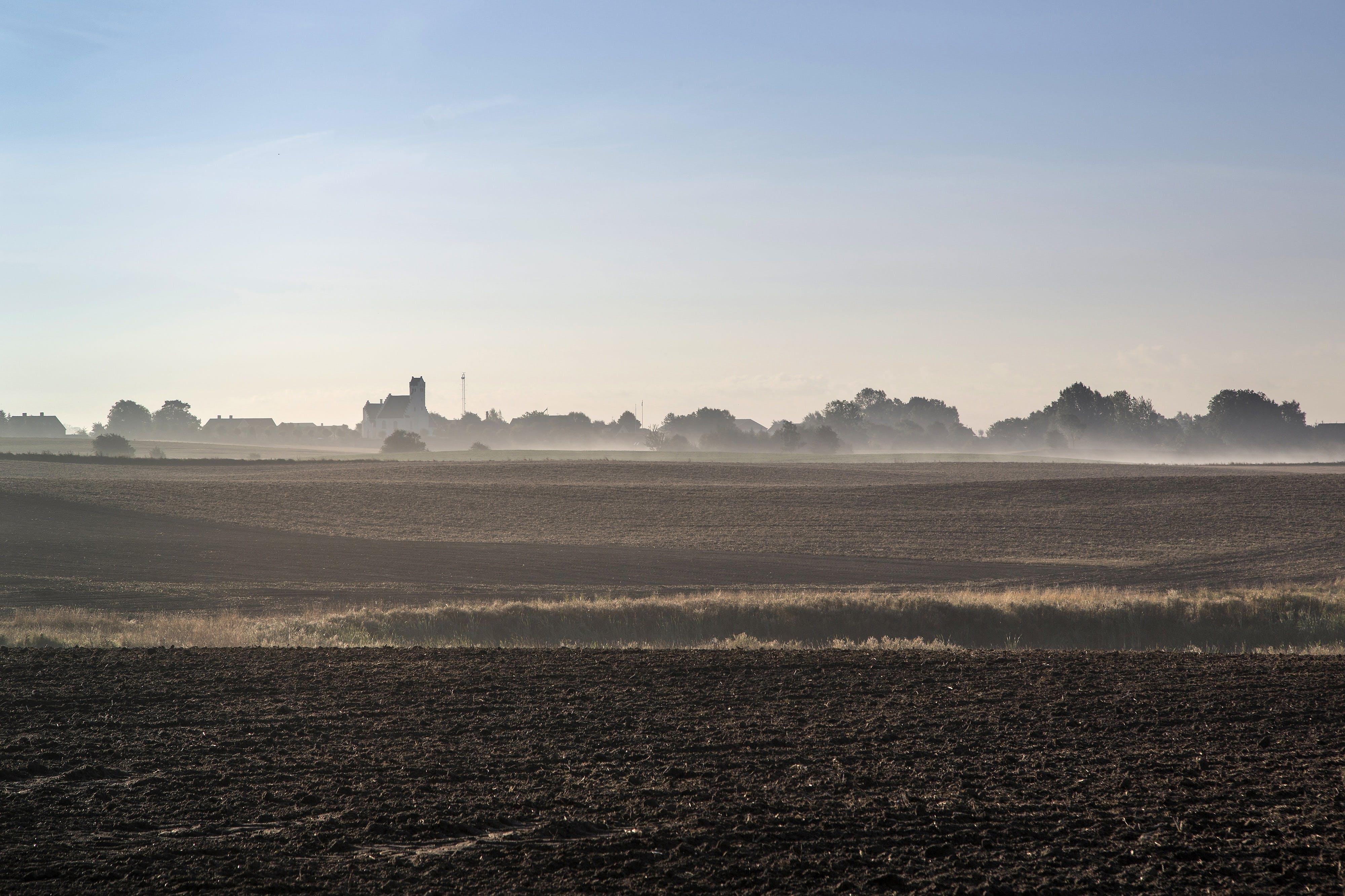 Det er omring 15.000 hektar tørvemarker, som skal forvandles tilbage til oprindelig natur. Det vil årligt reducere 270.000 tons CO2. Foto: CCBY: News Oresund