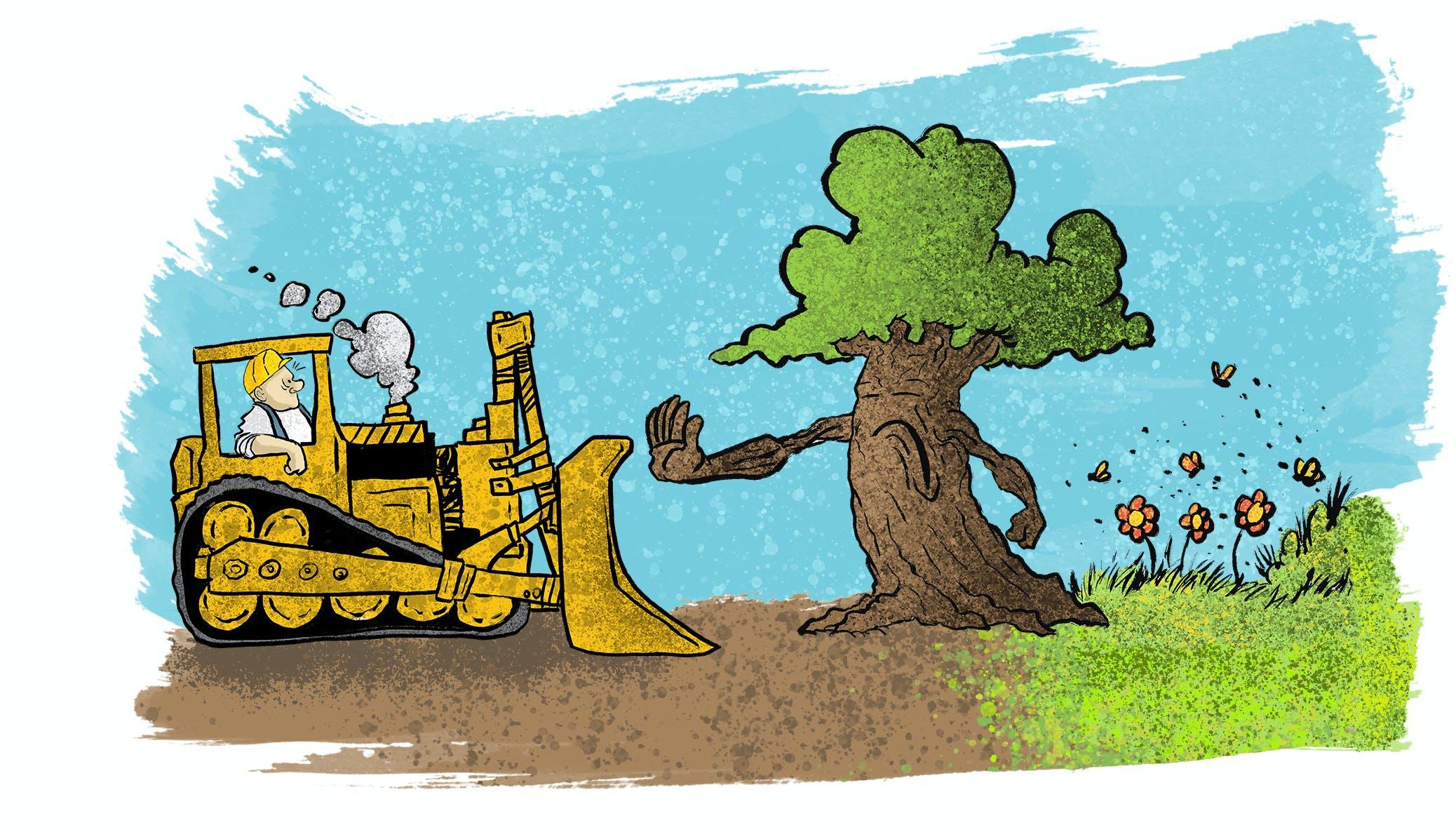Odsherred Kommune og Danmarks Naturfredningsforening vil frede et gammelt istidslandskab. Illustration: Lauge Eilsøe-Madsen, pensler fra Brusheezy.com