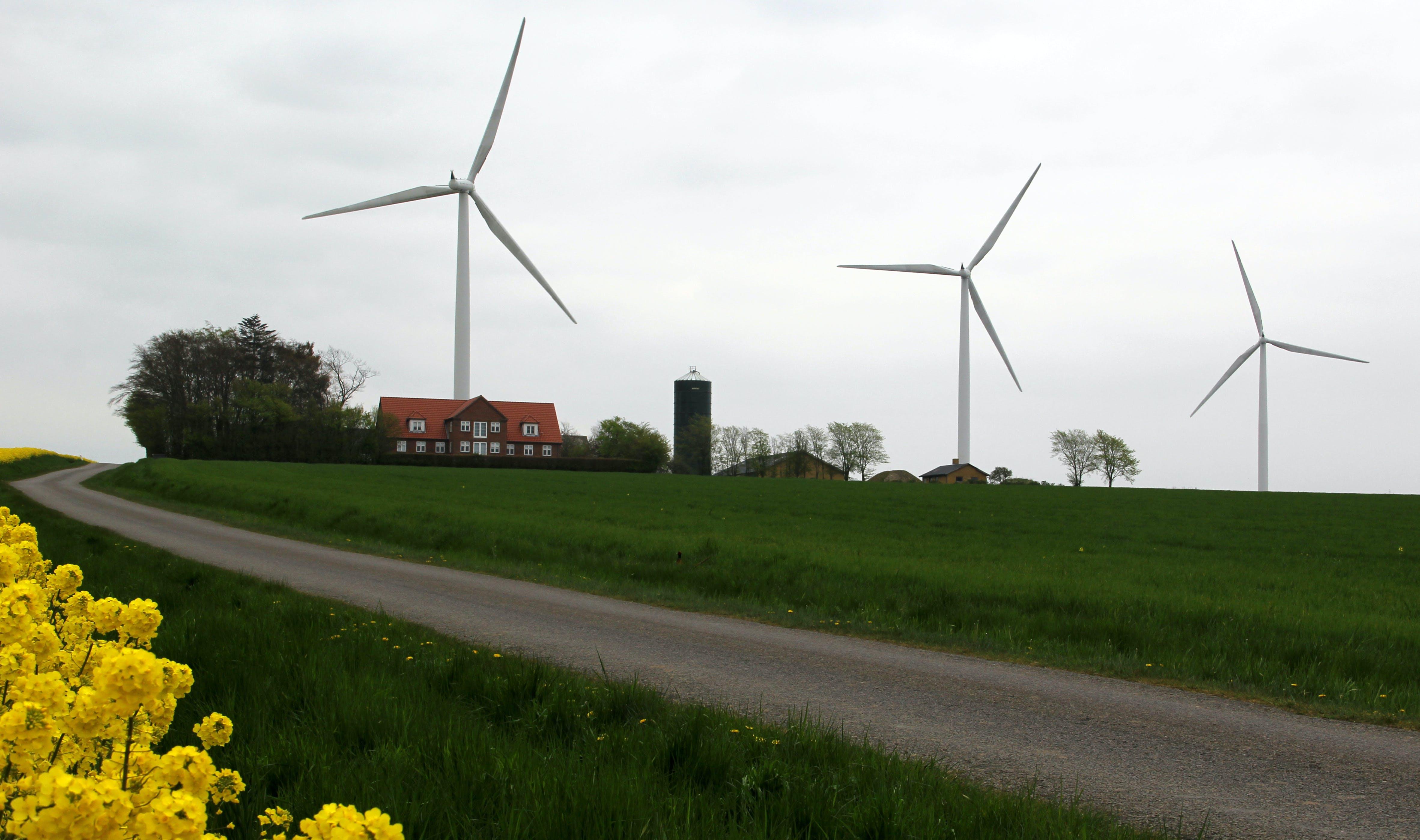 Vindmøllerne snurrer på Bornholm, og klippeøen har nu vundet EU's pris for den mest ambitiøse ø, når det gælder grøn strøm. Foto: Lis Eilsøe