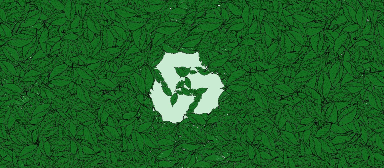 5 Ways Startups Can Make a Positive Environmental Impact