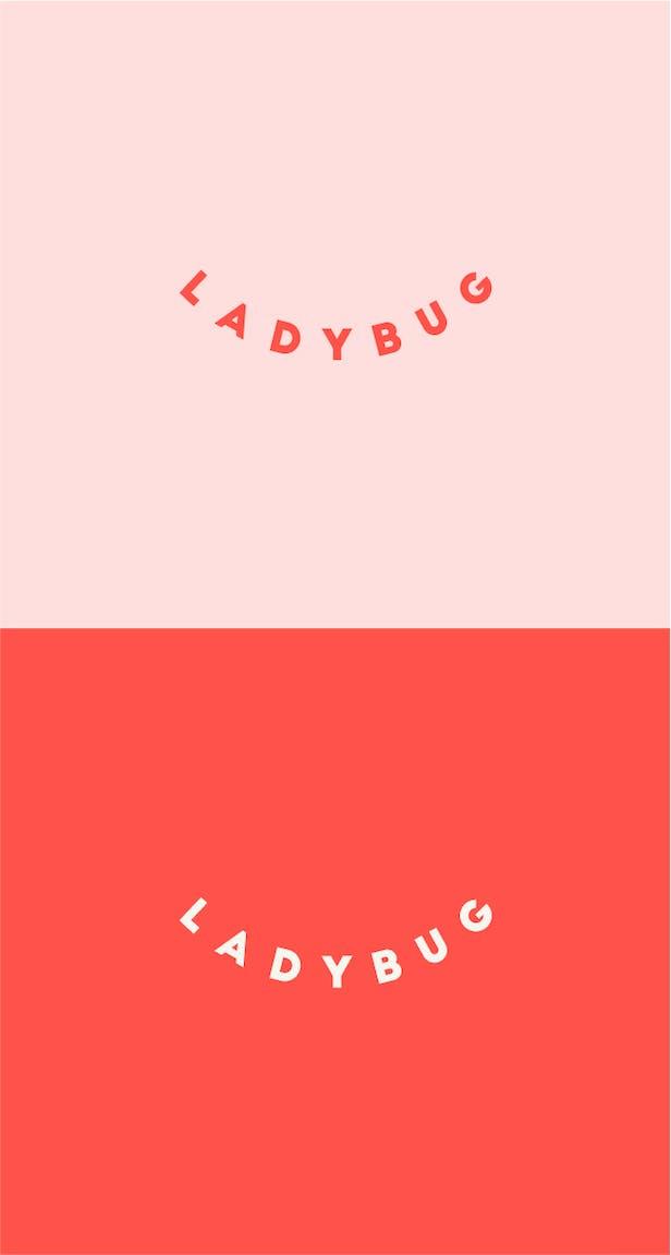 Ladybug case study image