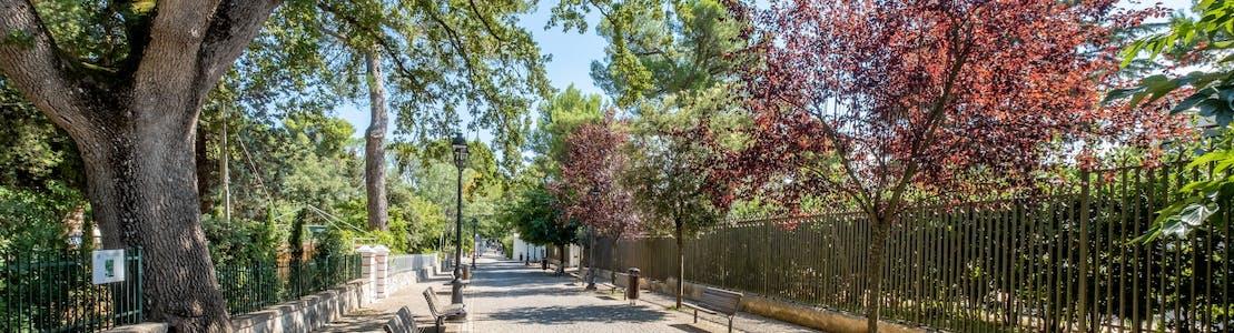 Street-Selva-di-Fasano-Puglia