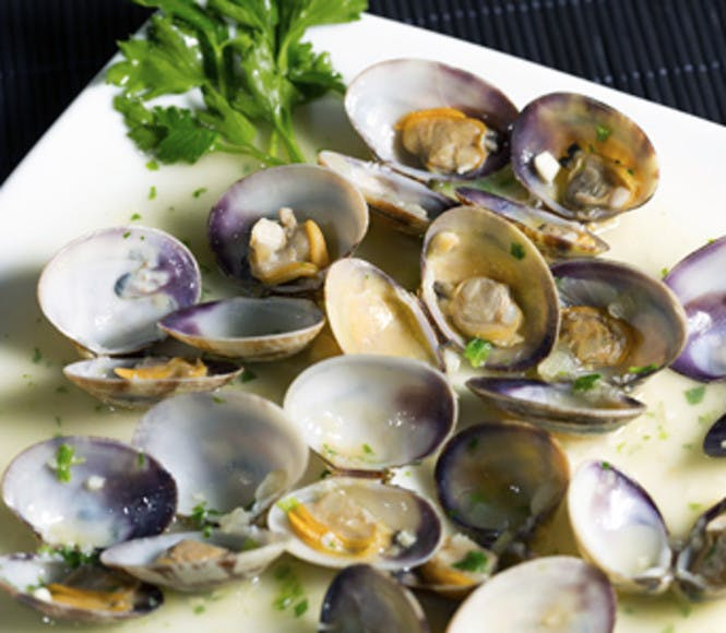 <p>Clams</p> -  Costa del Sol