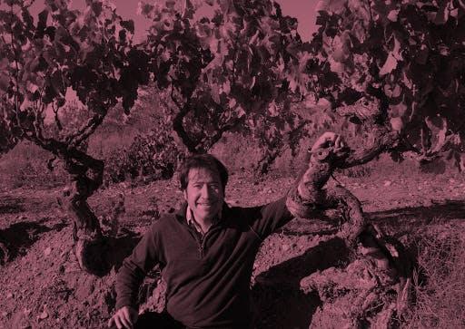 Costador wines - Vinsupernaturel