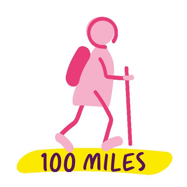 100 miles complete