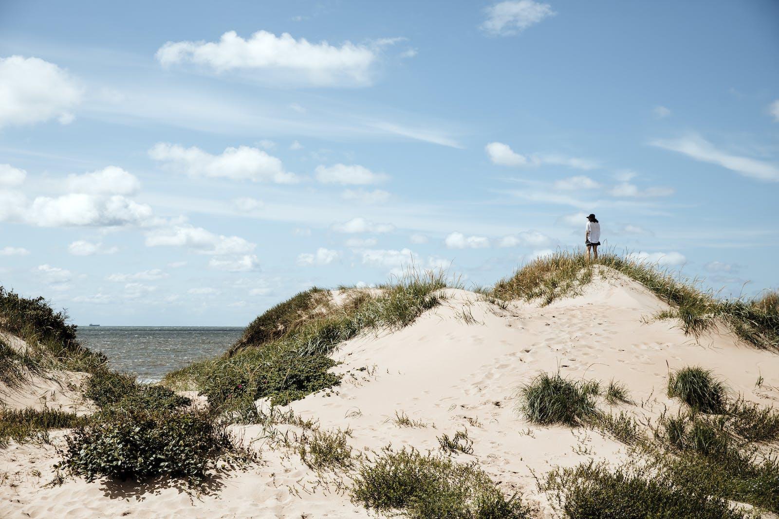 En person står på en sanddyn och blickar ut över havet.