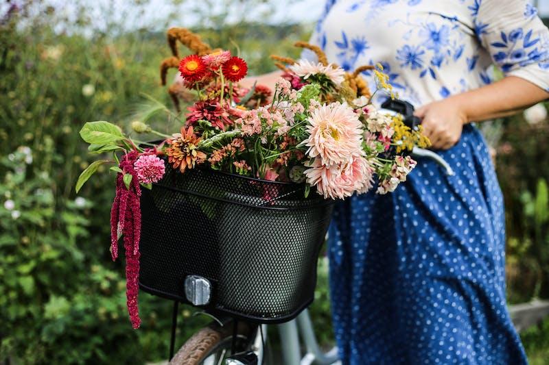 Ett fång med blommor plockade längs med Kattegattleden.