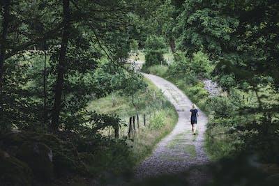 Hallandsleden går genom skog och mark i hela Halland