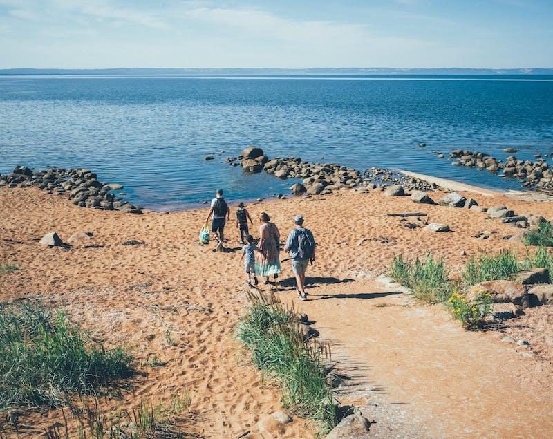 Tre vuxna och två barn är på väg ner till stranden.