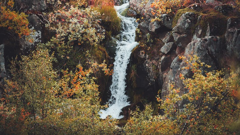 Waterfall in autumn in Iceland