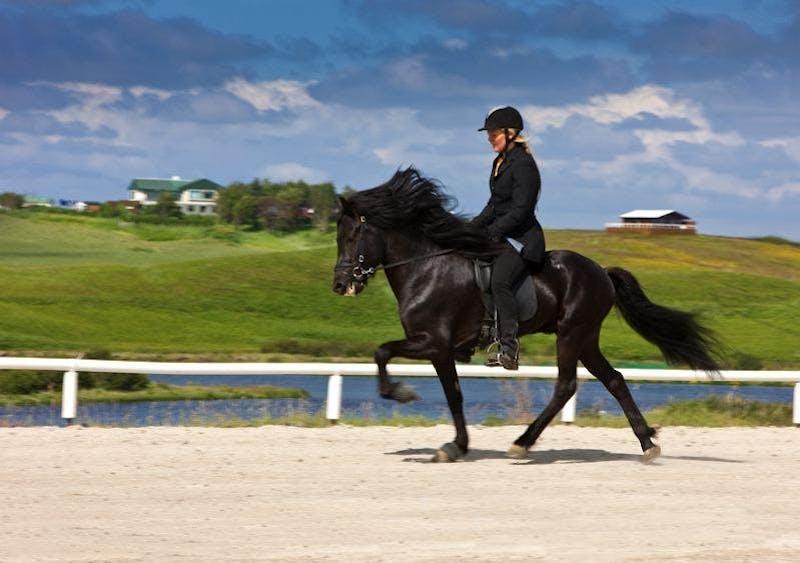A man riding a black horse