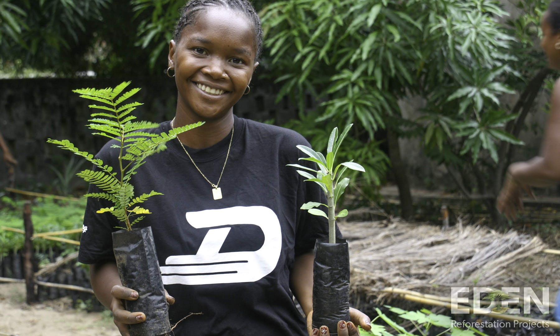 plant trees with Vitesy and Eden Rreforestation Projects