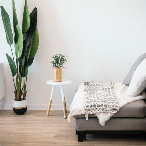 Formaldeide: come eliminarla dalla tua casa per respirare meglio