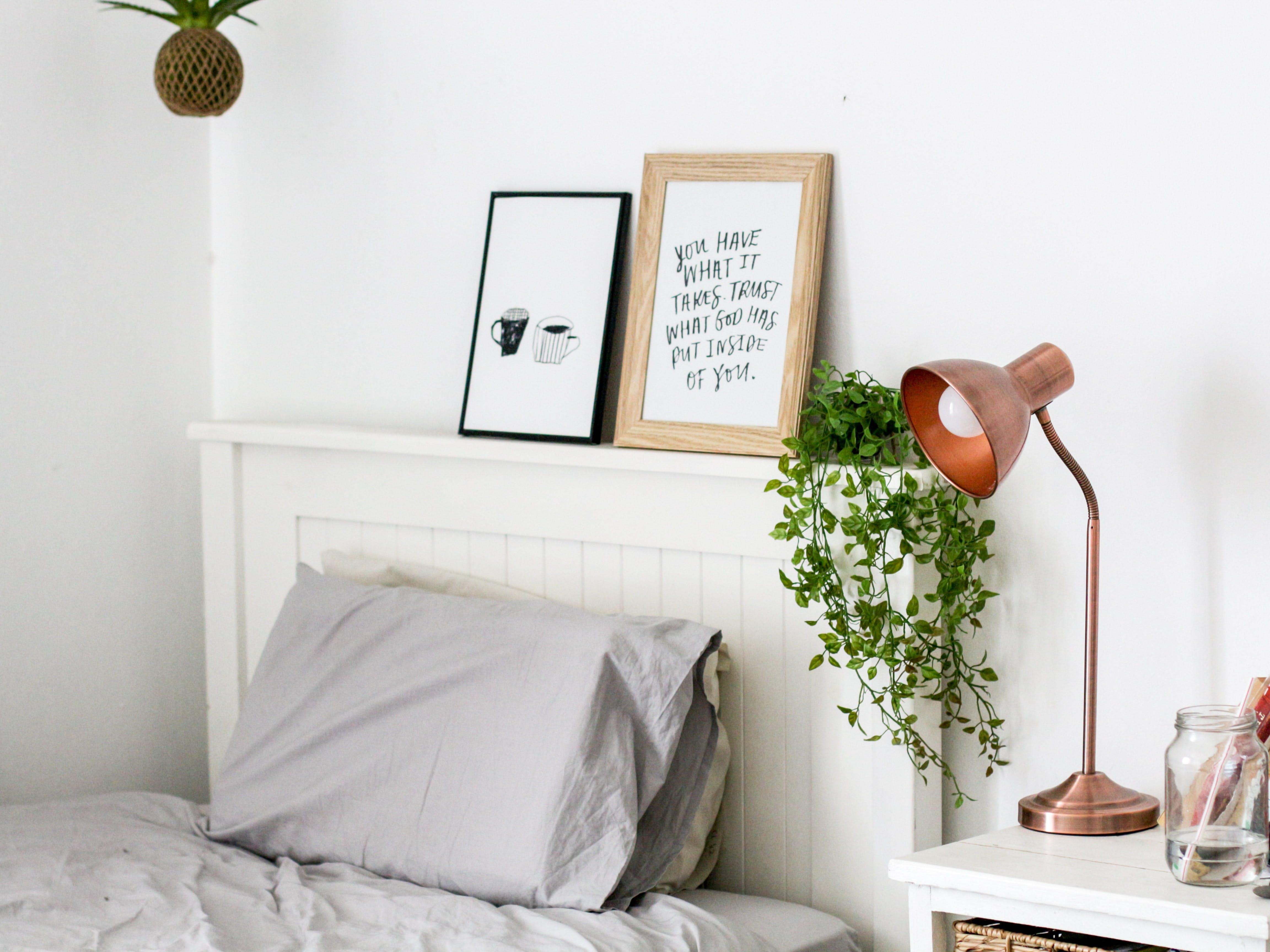Migliora Il Sonno Grazie Alle Piante Che Rilasciano Ossigeno Durante La Notte