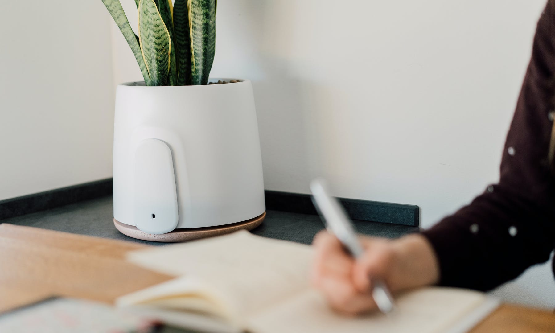 Natede is the sustainable and iot solution against air pollution