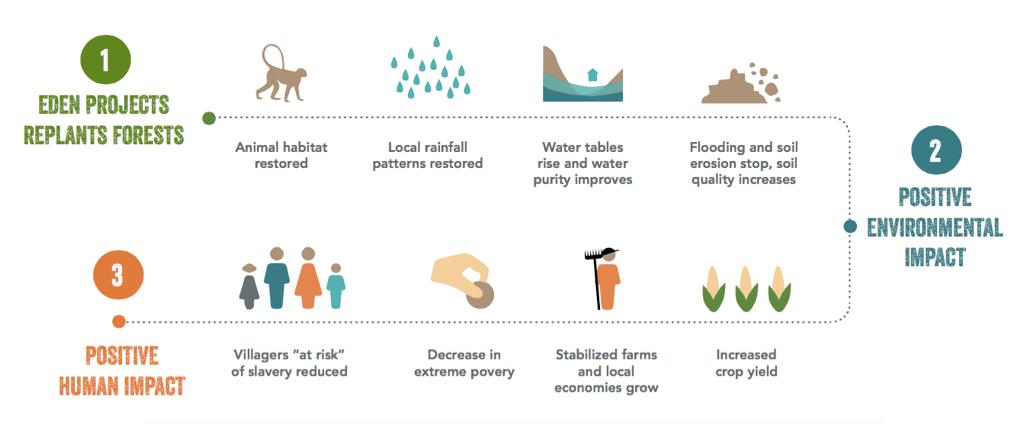 L'impatto di Eden Reforestation Projects