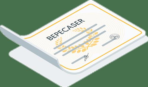 Diplome Bepecaser