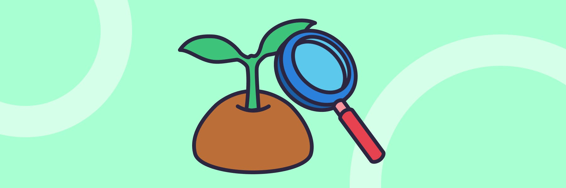 An illustration of a magnifying glass inspecting a growing seedling
