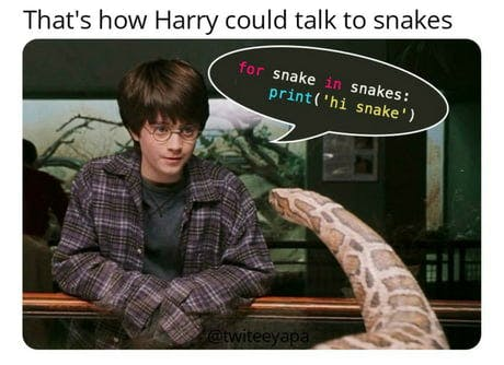 Harry Potter. for snake in snakes: print('hi snake')