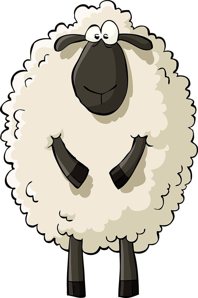 FOTOTAPETE THE SHEEP