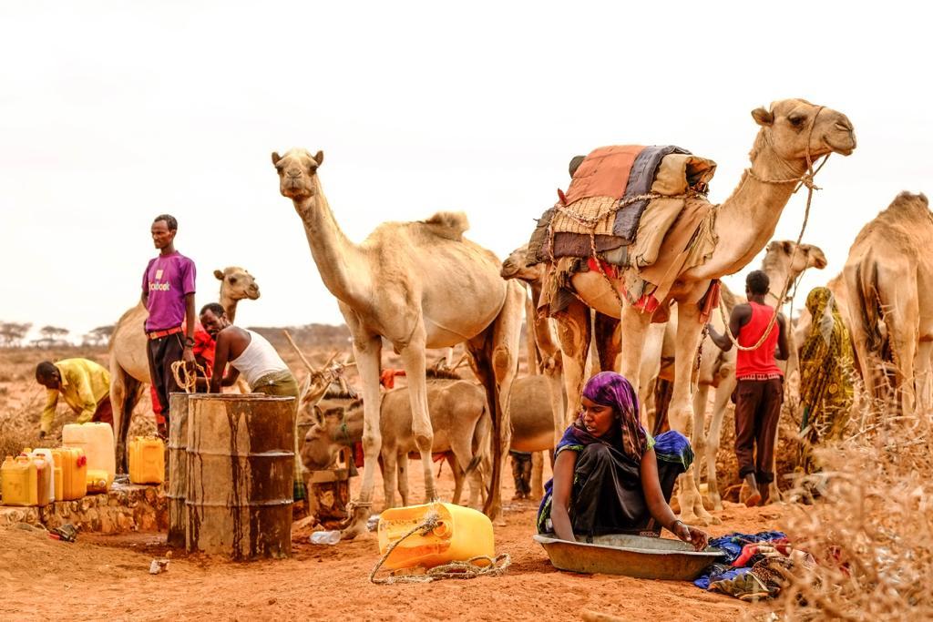 TWMP 2018 Somalia