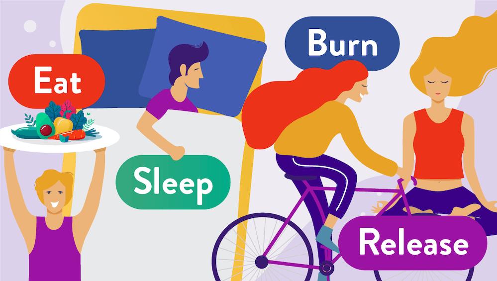 Four Pillars of Health: eat, sleep, burn, release