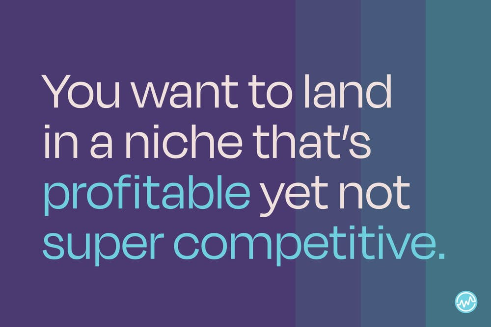 You want to land in a niche that's profitable yet not super competitive.