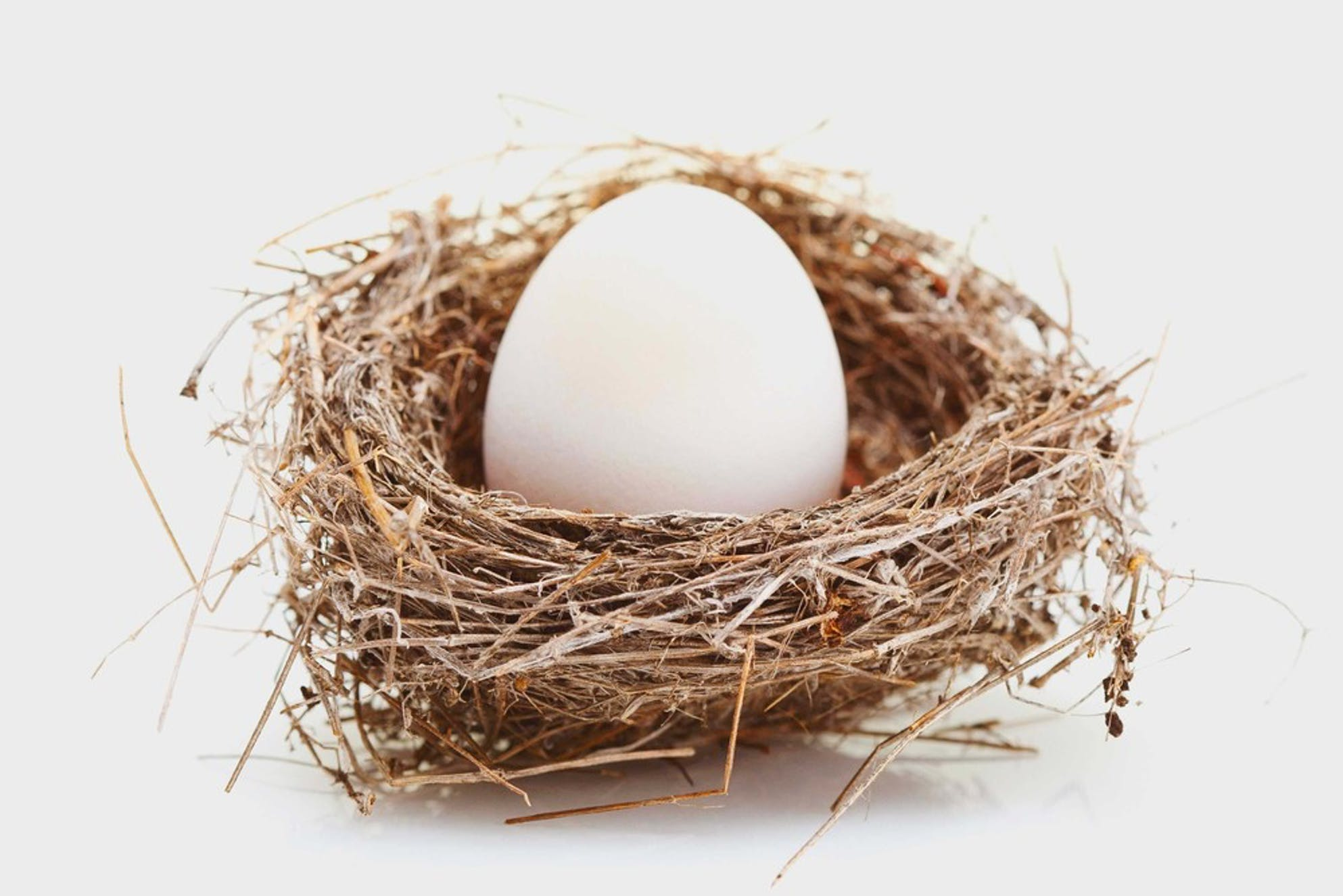 Egg in the next symbolizing IRA and Roth IRA