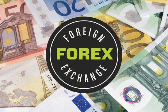 Forex for beginners: the ultimate guide