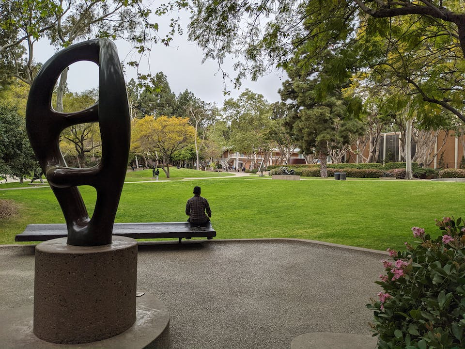Person sitting on a bench overlooking a green grassy area at UCLA